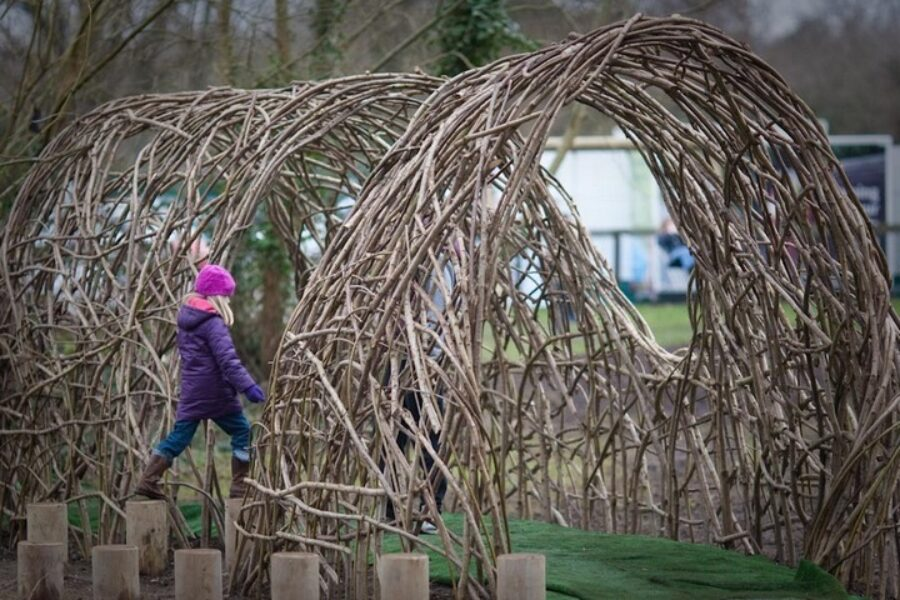 Willow coppice play area Tim Johnson